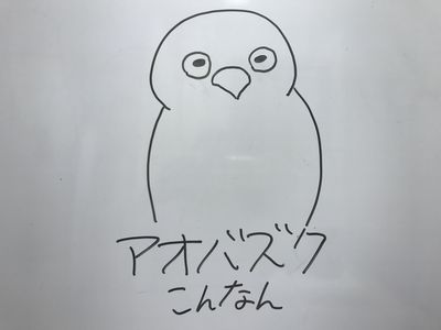 aobazuku.JPG