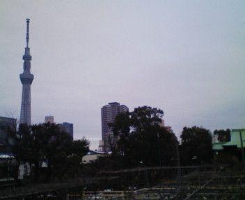 tennjinnkaraskytree.jpg